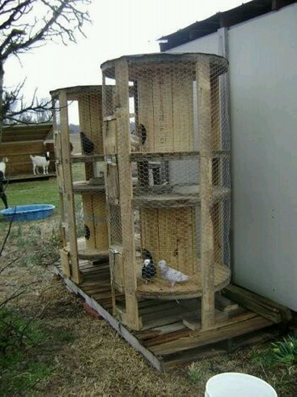 Upcycled Cable Reel Ideas Garden Chickens Backyard
