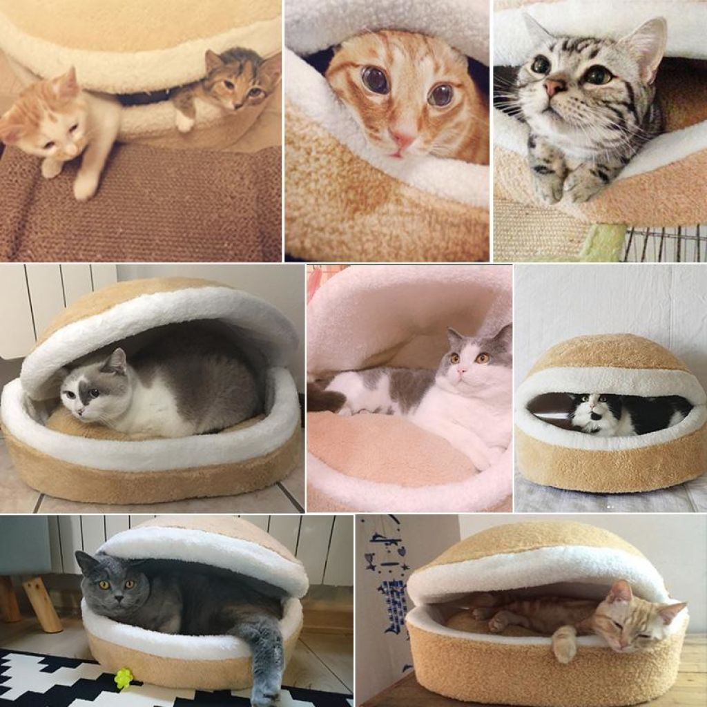 d8893259991 Best Selling Burger Bun Pet Bed | New Offers Only For Nice People ;)