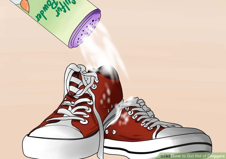 Get rid of chiggers chuck taylor sneakers high top