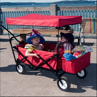 Easy Go Wagon With Canopy On The Move Pinterest