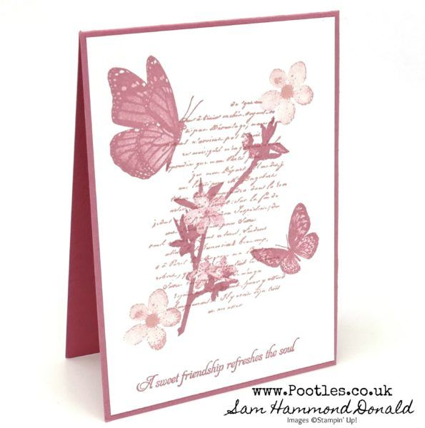 Very Versailles Butterfly Wishes Customer Thank You Cards