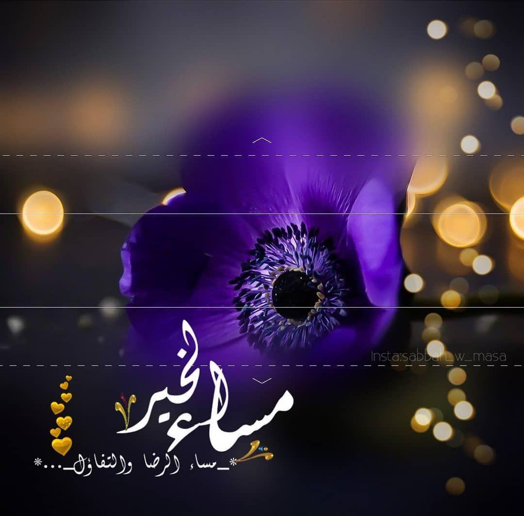 صبح و مساء On Instagram مساء الخير مساء الرضا و التفاؤل مساء الورد تصميم تصاميم السعودية صبح ومساء مسيتوا بالخير مساء الشو In 2021
