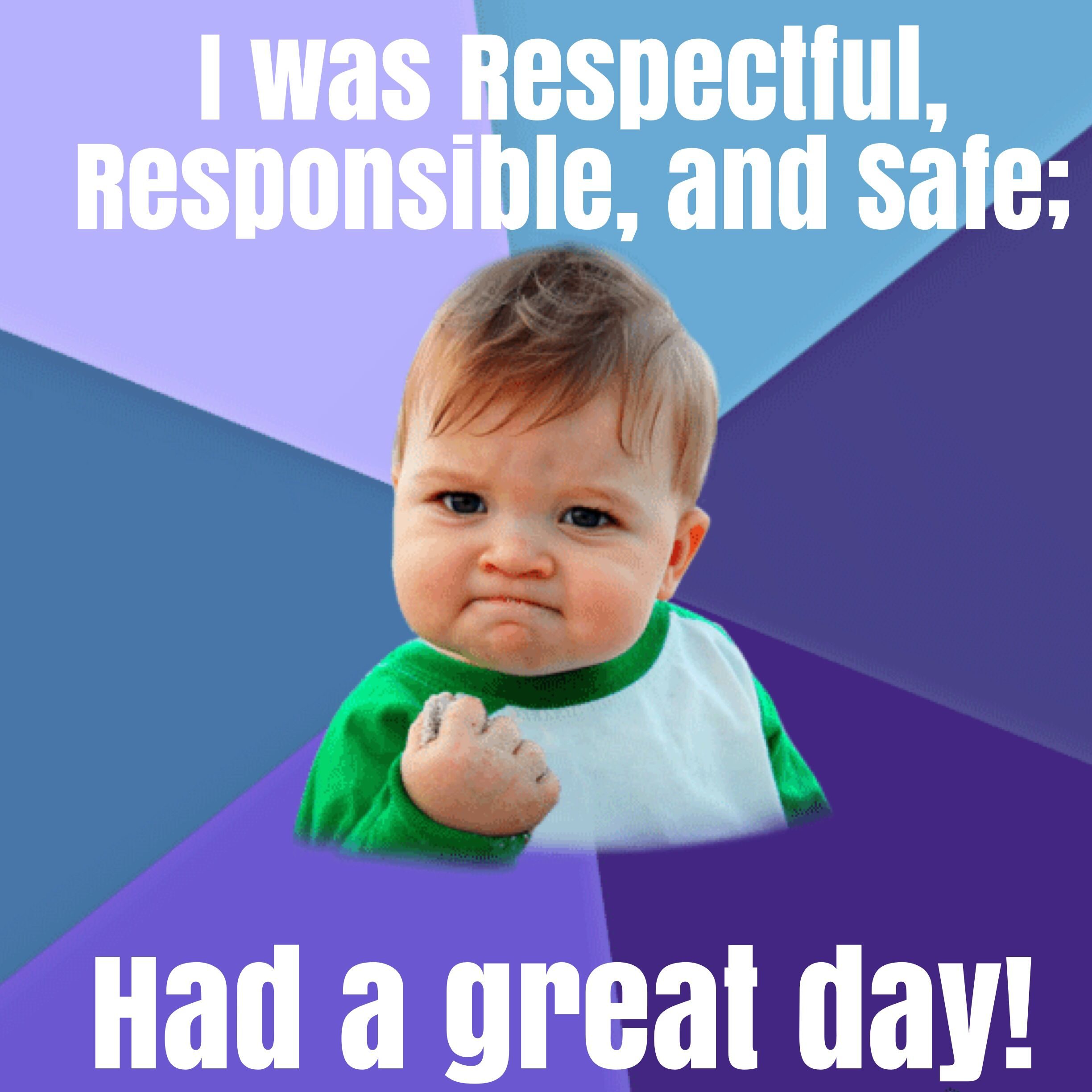 Respectful Responsible Safe