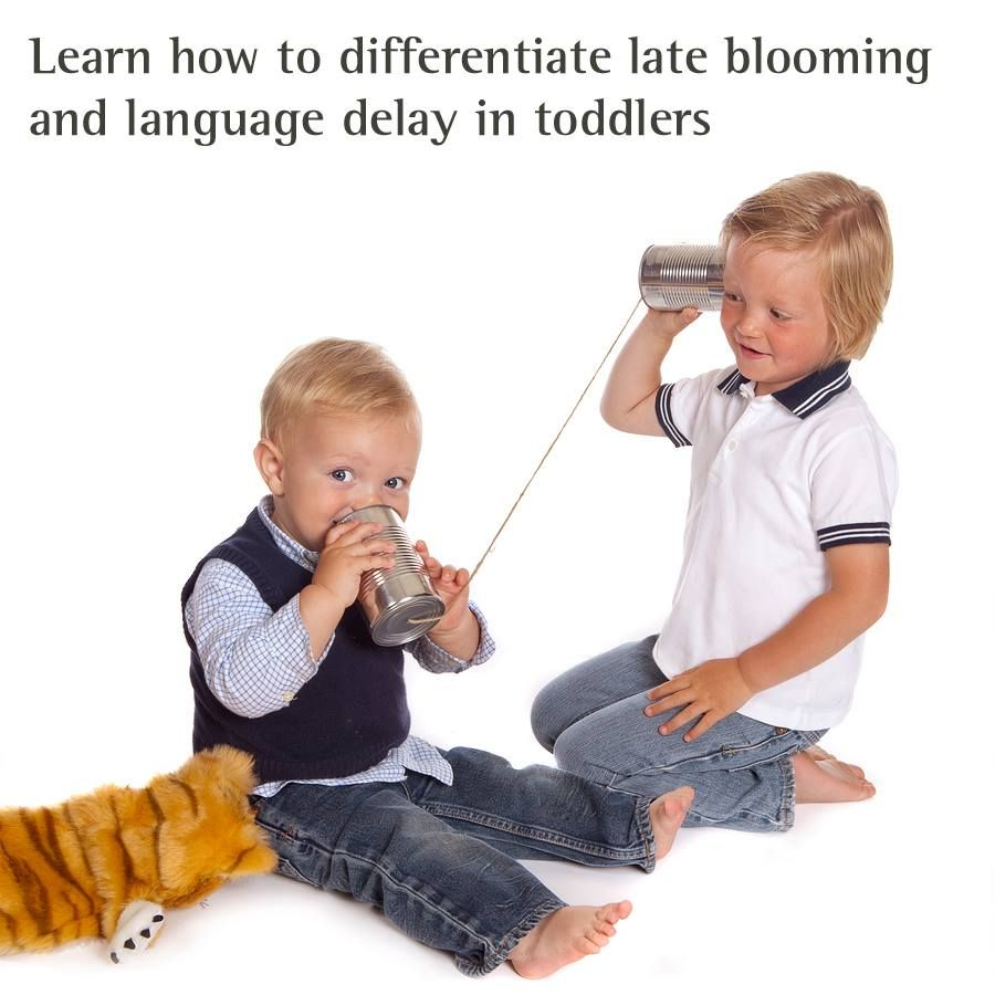 Differentiating late bloomers from language delay. Photo ...