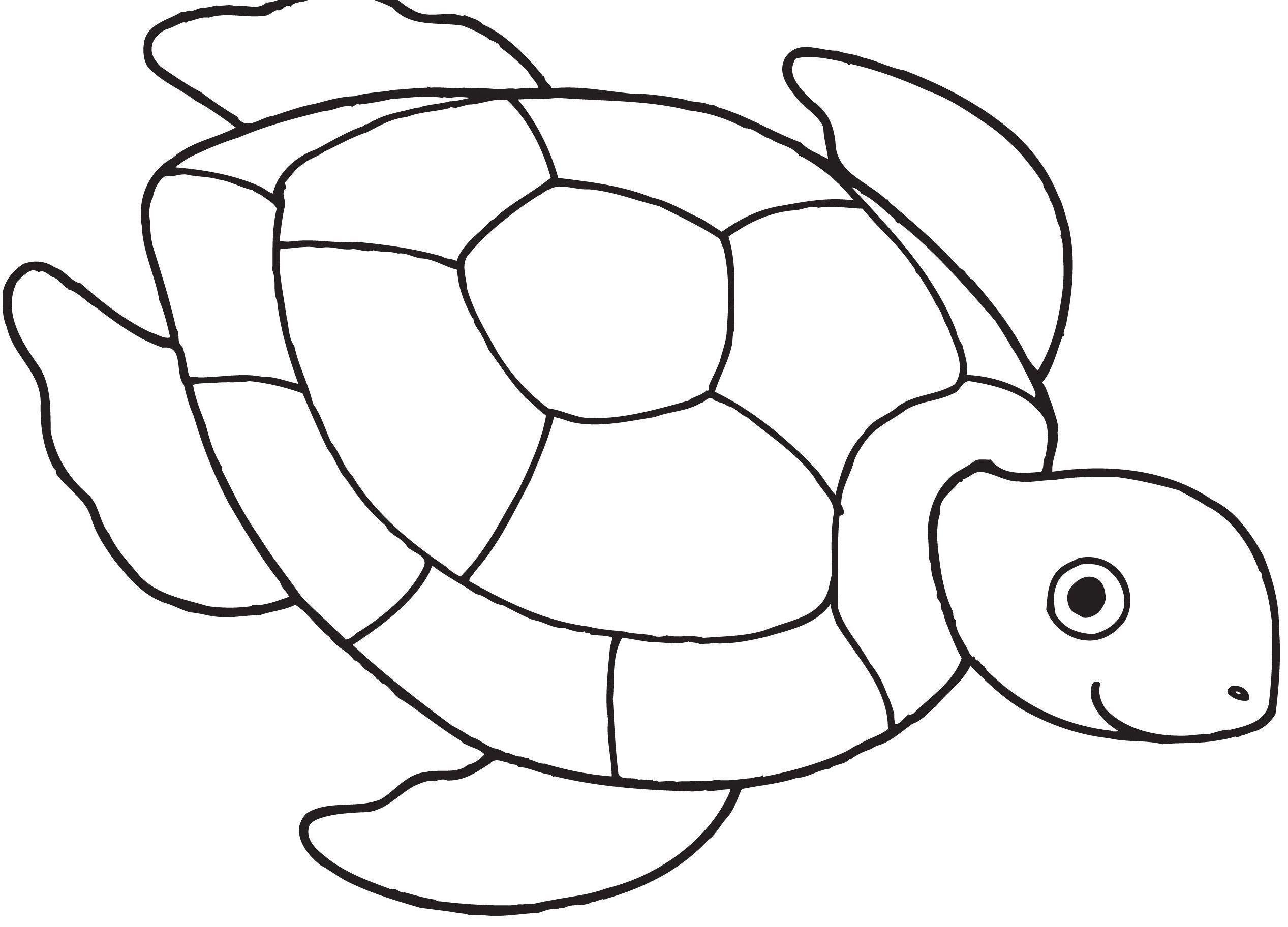 Printable Sea Turtle Template Guvecurid Schildpad Tekening Garen Knutselen Kinderen Vissen Tekenen