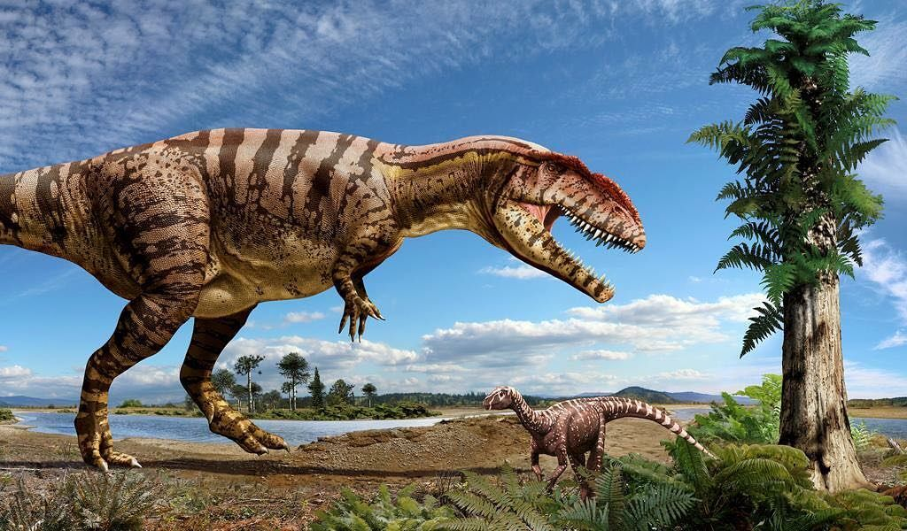 Christian reno on instagram giganotosaurus theropod