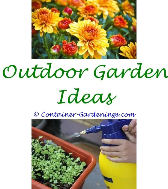 Garden Landscaping Ideas Uk | Small Garden Ponds, Garden Pond And Garden  Ideas