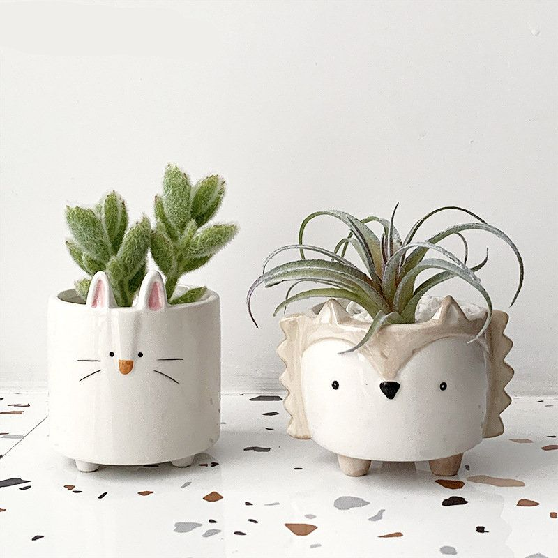 Pin On Succulent Planters
