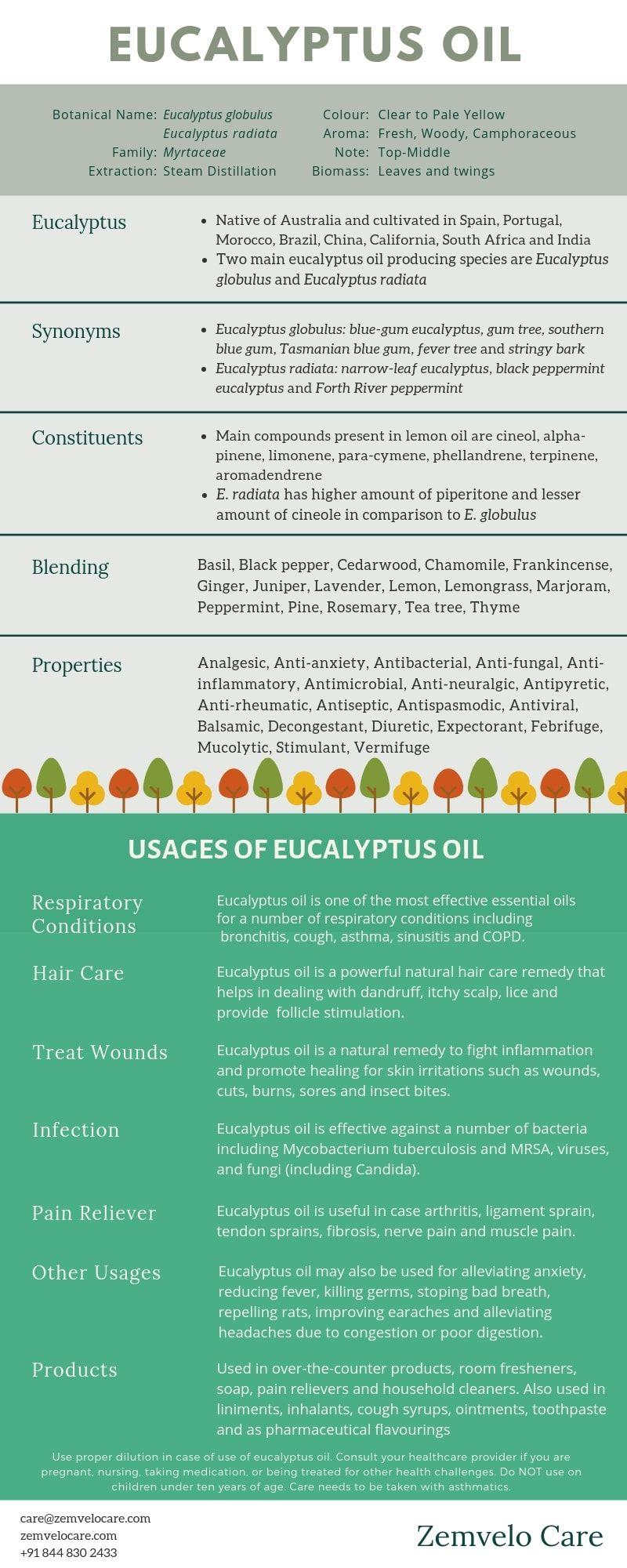 Eucalyptus Oil Guide Benefits Properties Characteristics Composition In 2020 Eucalyptus Oil Eucalyptus Essential Oil Uses Essential Oils Guide