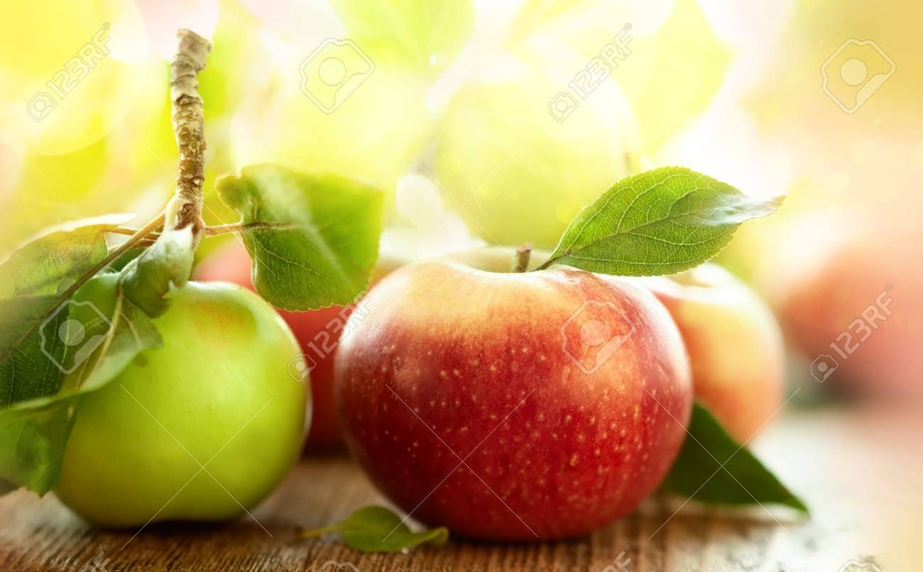 Fresh Red And Green Apples With Leaves On The Wooden Table Aff Green Red Fresh Apples Table Green Apple Apple Photography For Sale