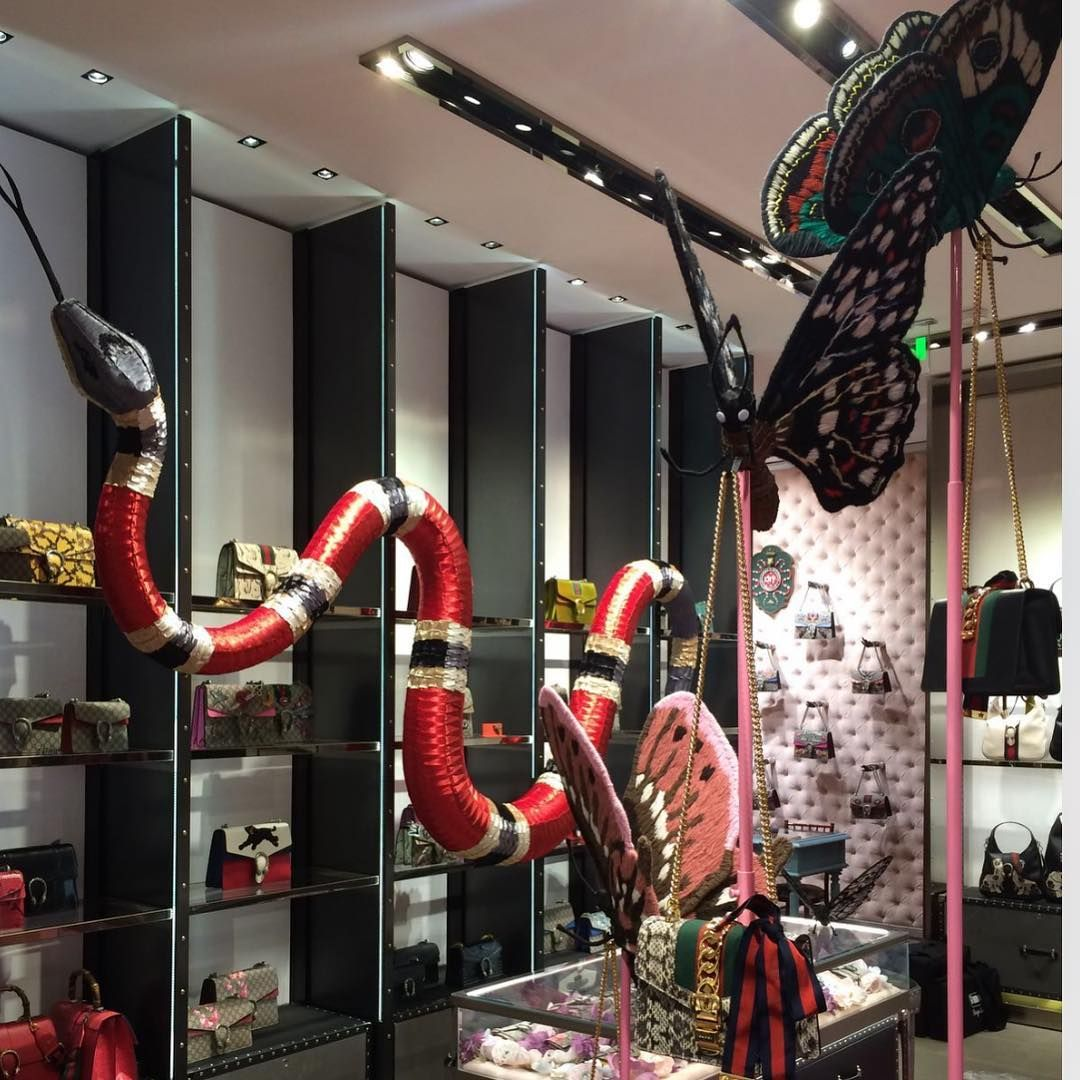 Gucci milan italy if your confident enough every zoo