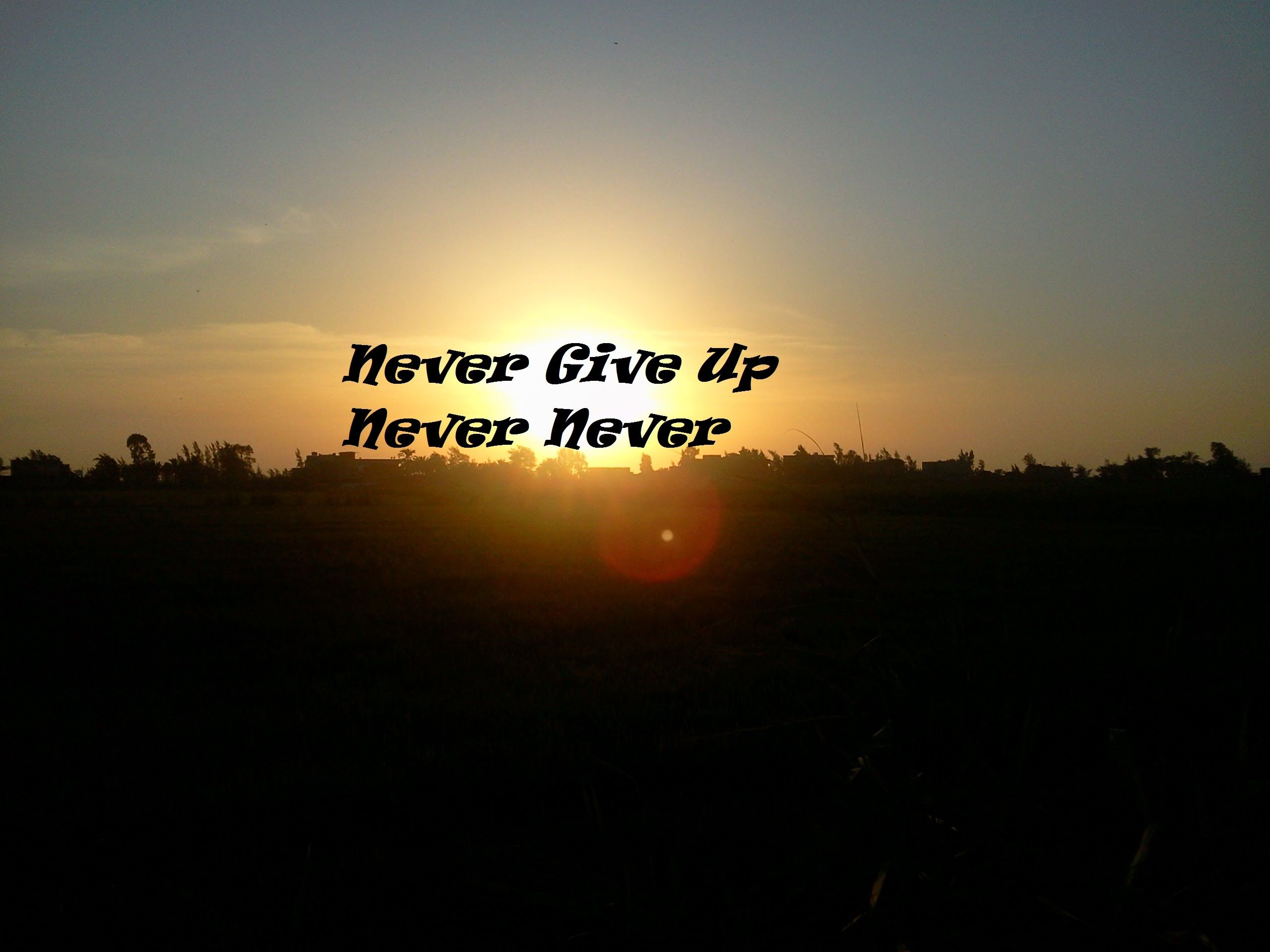Never Give Up Never Give Up A Dream Worth Living Never Give Up The