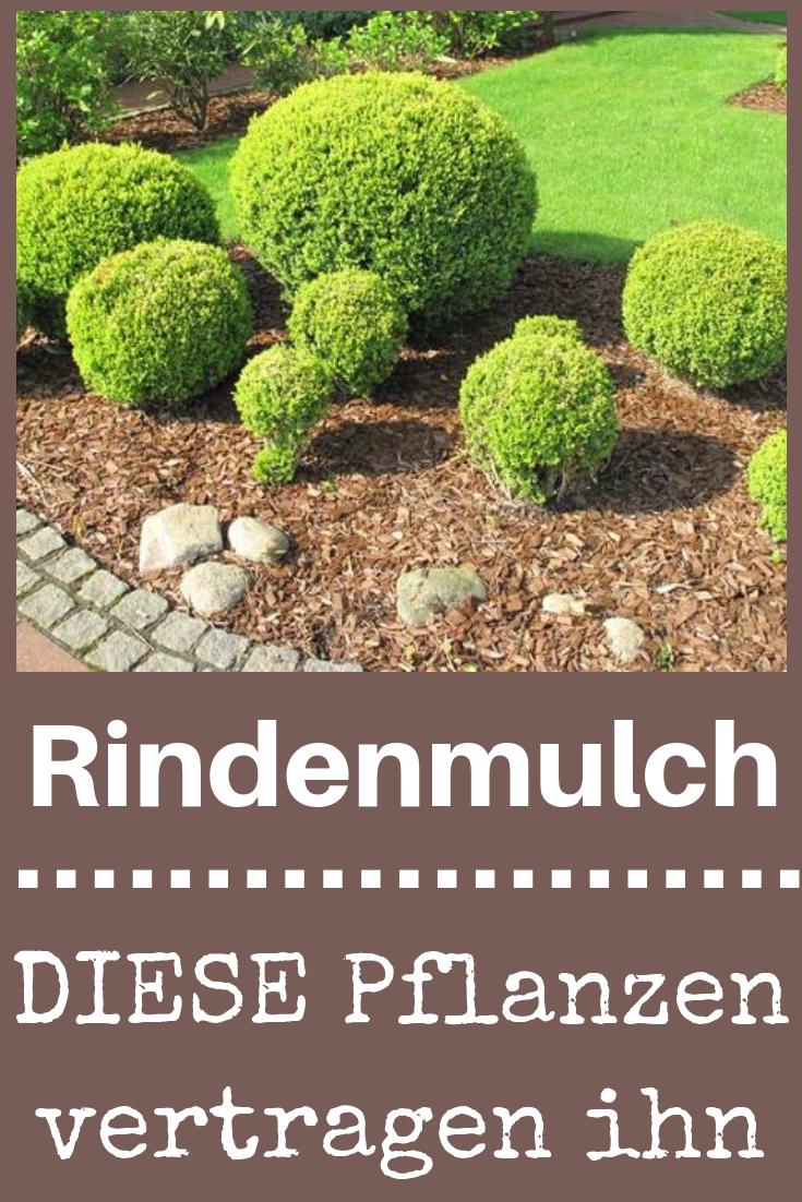 Rindenmulch | selbst.de