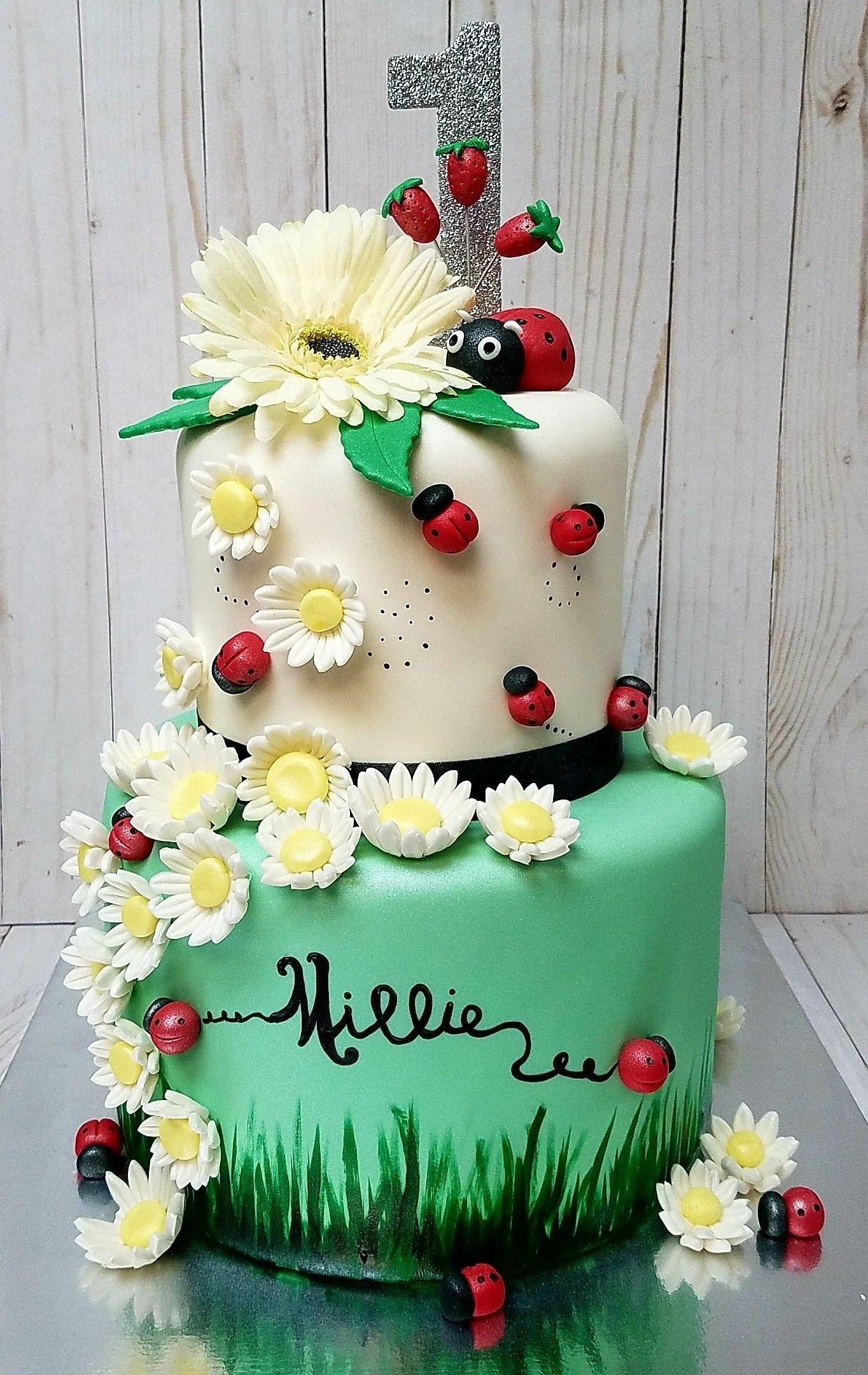 Lady Bug First Birthday Fondant Cake With Gumpaste Flowers