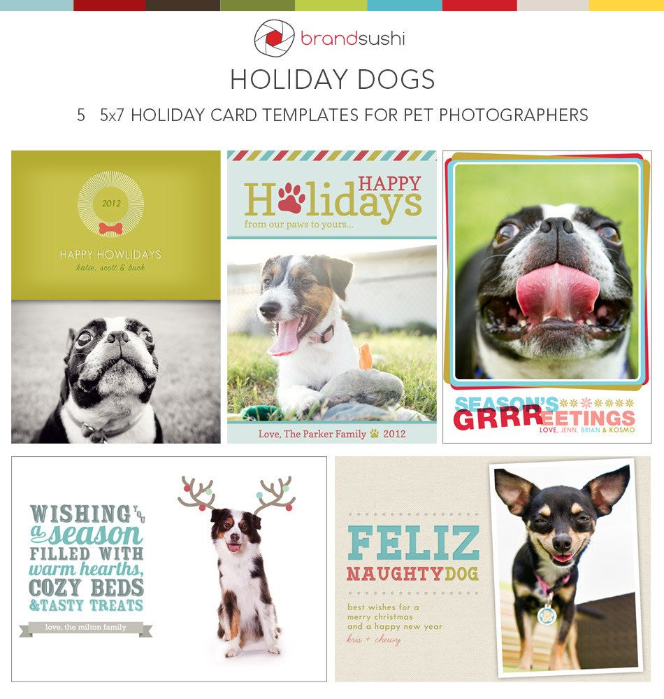 Holiday Card Collection Holiday Dog Photoshop Templates For Pet