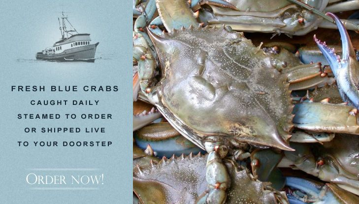 recipe: order live blue crabs online [36]