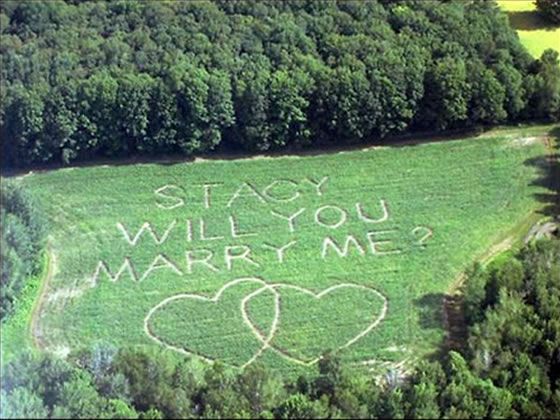 Better ways to Wedding Proposal! - http://www.thelivefeeds.com/better-ways-to-wedding-proposal/