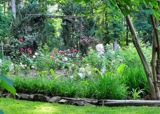 Gardens At 803 Elizabeth Bed And Breakfast | Matthews Bu0026B In North Carolina  | Near Charlotte NC   803 Elizabeth Bed And Breakfast Matthews NC |  Pinterest