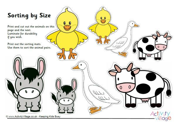 farm animal sorting by size k sitteet farm animals preschool sorting activities. Black Bedroom Furniture Sets. Home Design Ideas