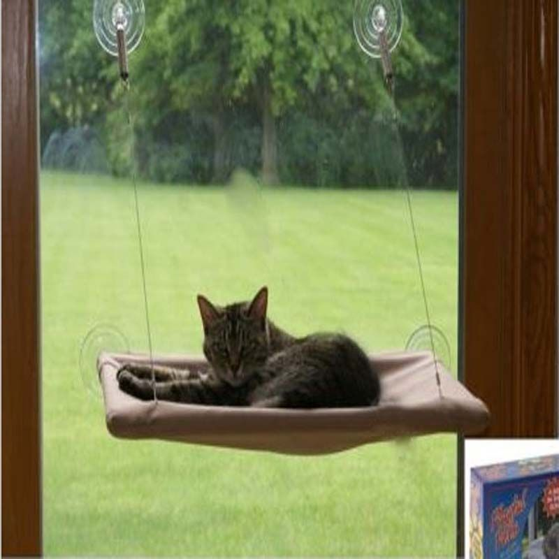 Winning  Pc Suction Cups Conservatory Sunshine Window Bed For Cats Dogs  With Foxy  Pc Suction Cups Conservatory Sunshine Window Bed For Cats Dogs Pet Wall  Bed With Delectable Garden Holiday Village Majorca Also Waterproof Garden Sail Canopy In Addition Standard Trees For Small Gardens And Sky Garden Bali As Well As Best Garden Office Additionally Garden Kneeling Stool From Pinterestcom With   Foxy  Pc Suction Cups Conservatory Sunshine Window Bed For Cats Dogs  With Delectable  Pc Suction Cups Conservatory Sunshine Window Bed For Cats Dogs Pet Wall  Bed And Winning Garden Holiday Village Majorca Also Waterproof Garden Sail Canopy In Addition Standard Trees For Small Gardens From Pinterestcom
