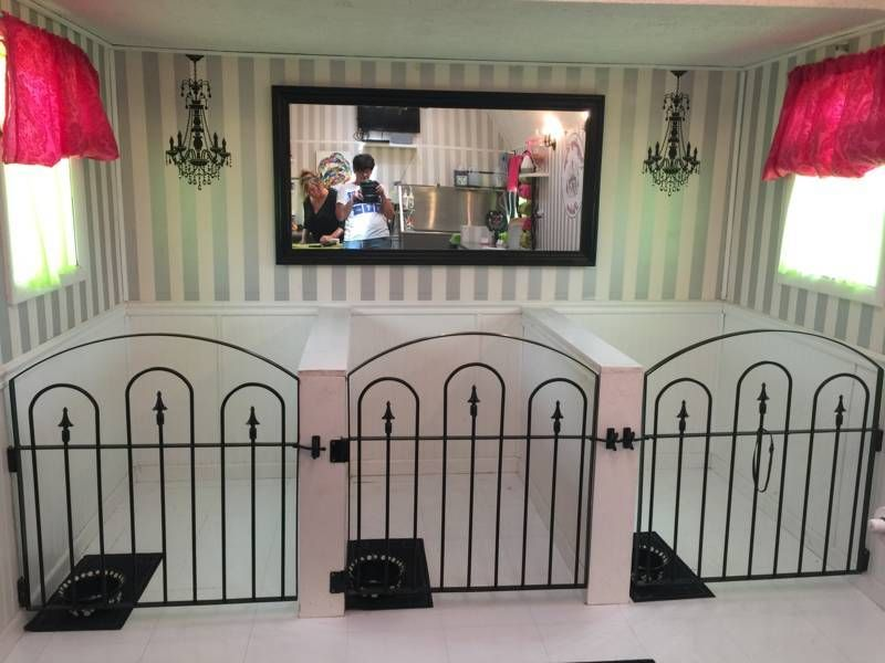 Will Iron Fence Gates Work For Pets Dog Grooming Salons Dog Kennel Dog Rooms