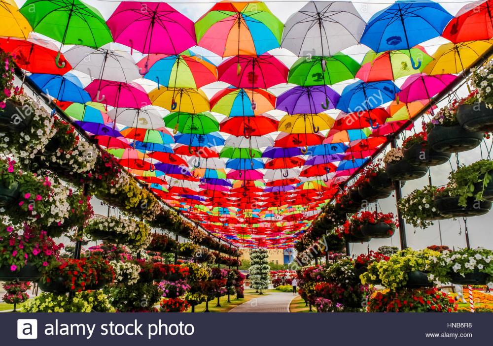 dubai miracle garden Google Search Flower garden