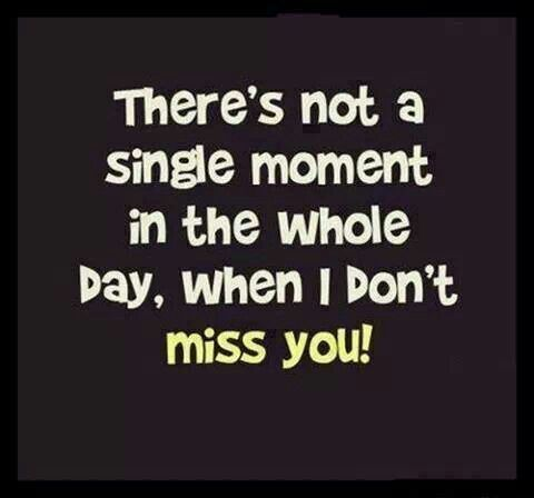 There Not A Single Moment I Don T Miss You I Miss You Quotes