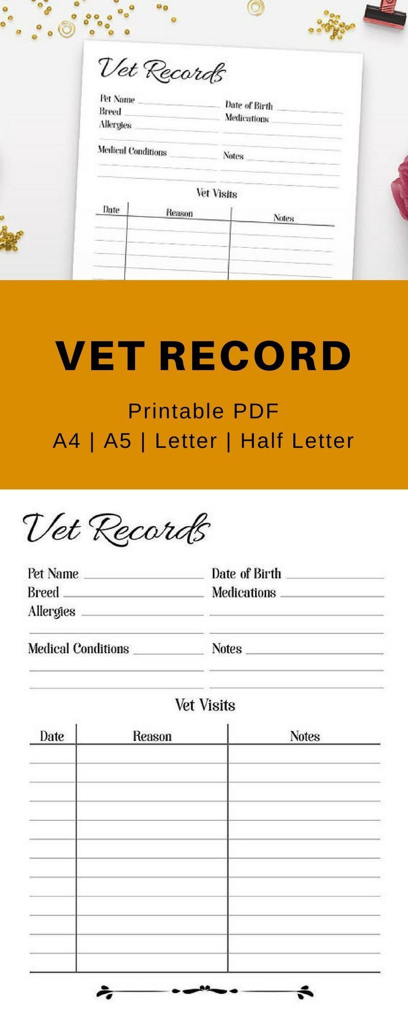 Pet Health Record Template In 2021 Pet Care Printables Pet Health Pet Health Record Pet medical records template download