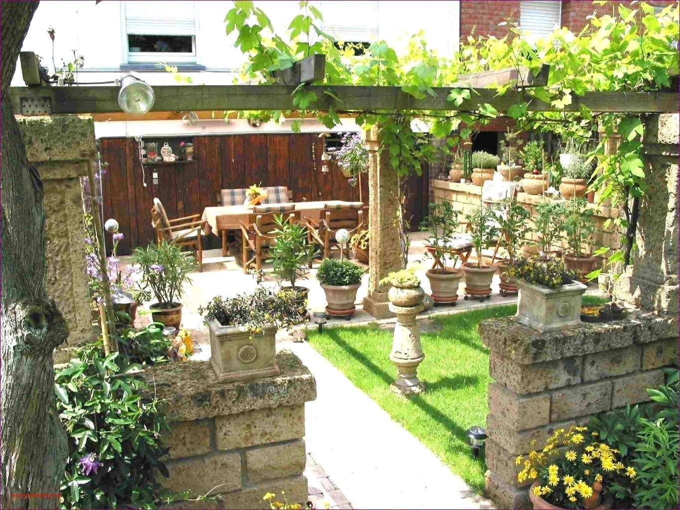 10 Gartengestaltung Sichtschutz Pflanzen Sichtschutzpflanzen 10