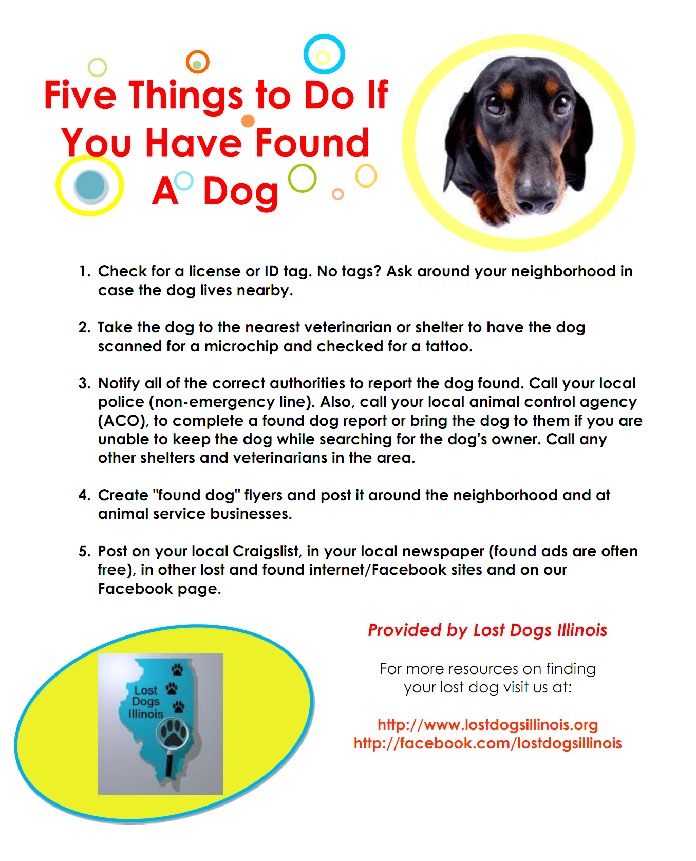 It Is The Law That You Must Make Every Reasonable Effort To Locate The Owner Of A Found Pet Here Are Some Of The Things To Do Dogs Losing A