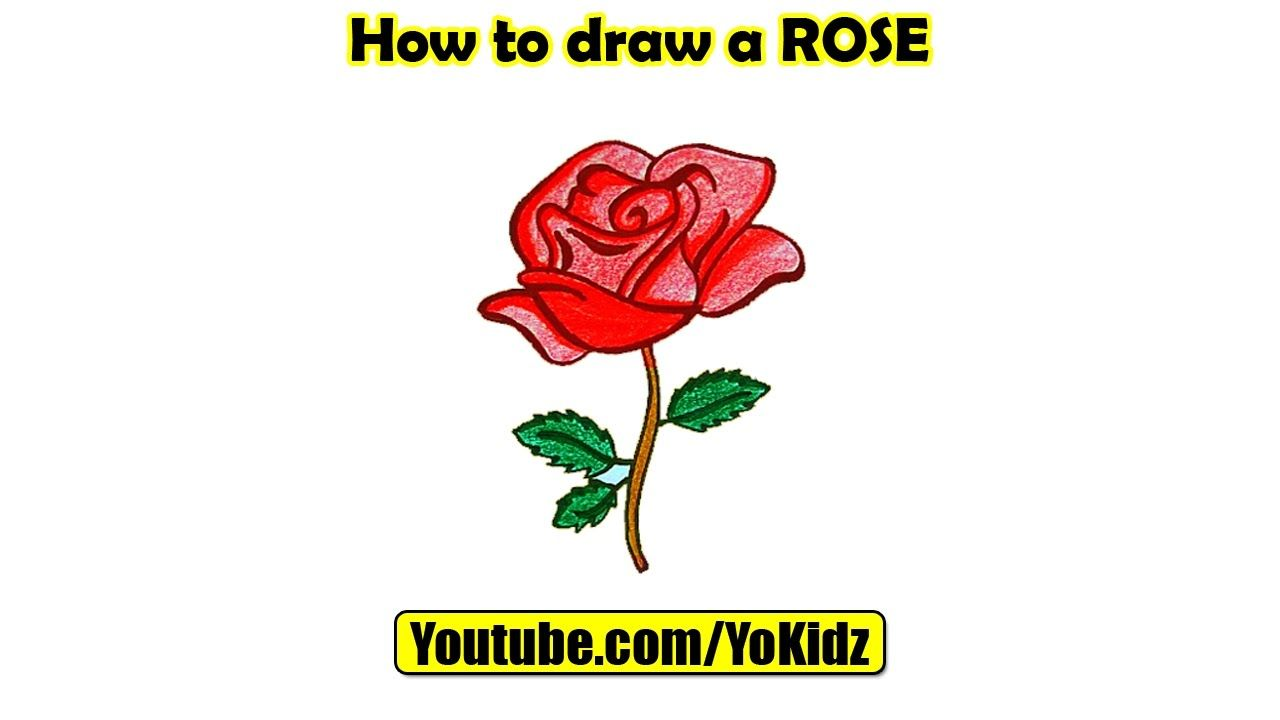 How To Draw A Rose In This Post, We Are Going To Learn How To