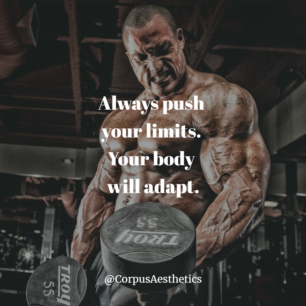 Always Push Your Limits Your Body Will Adapt Bodybuilding Motivation In 2021 Bodybuilding Motivation Quotes Bodybuilding Quotes Muscle Quotes