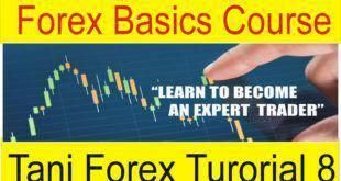 Interactive borkers comisiones forex