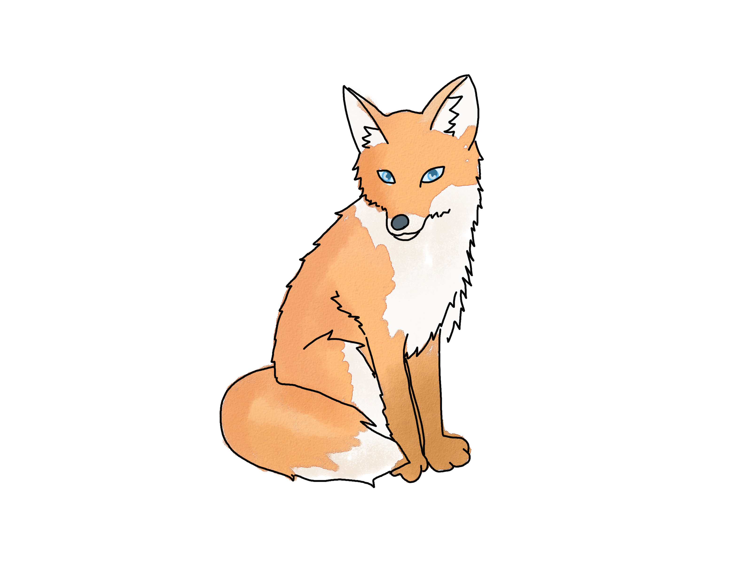 Draw a fox foxes drawings and fox drawing how to draw a fox via wikihow jeuxipadfo Gallery