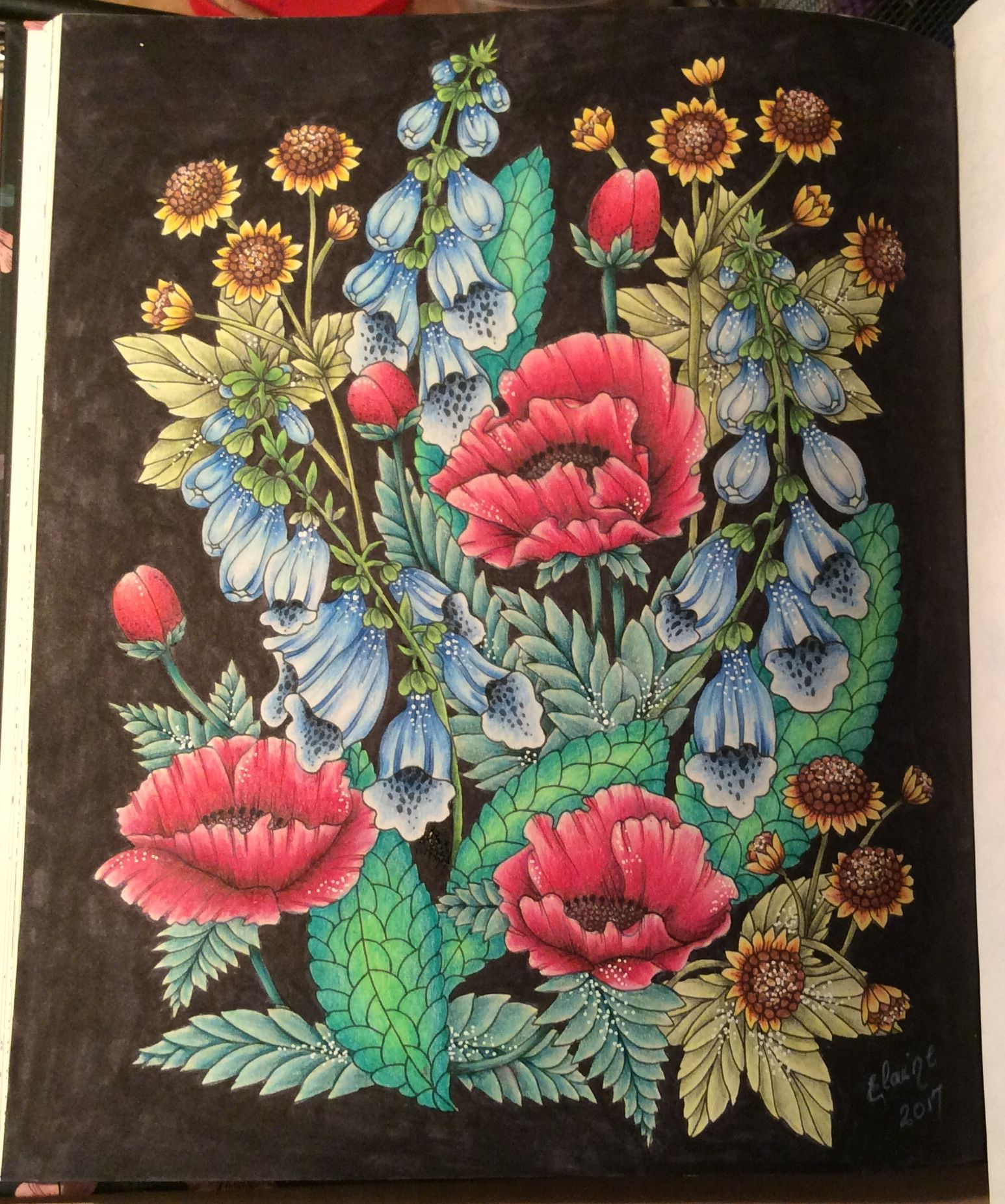 Livre Twilight Garden De Maria Trolle Coloring Pages In