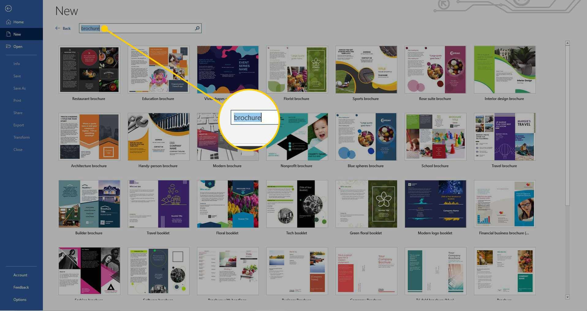 How To Make A Brochure On Microsoft Word for Microsoft
