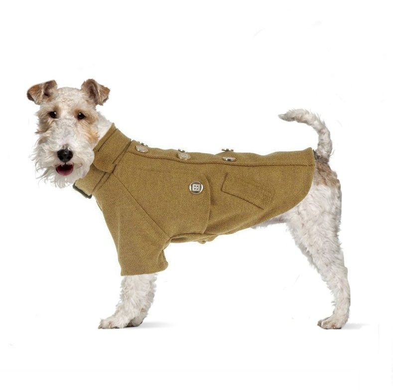 The George Tweed Dog Coat | Pettecoats | Spring Collection ...