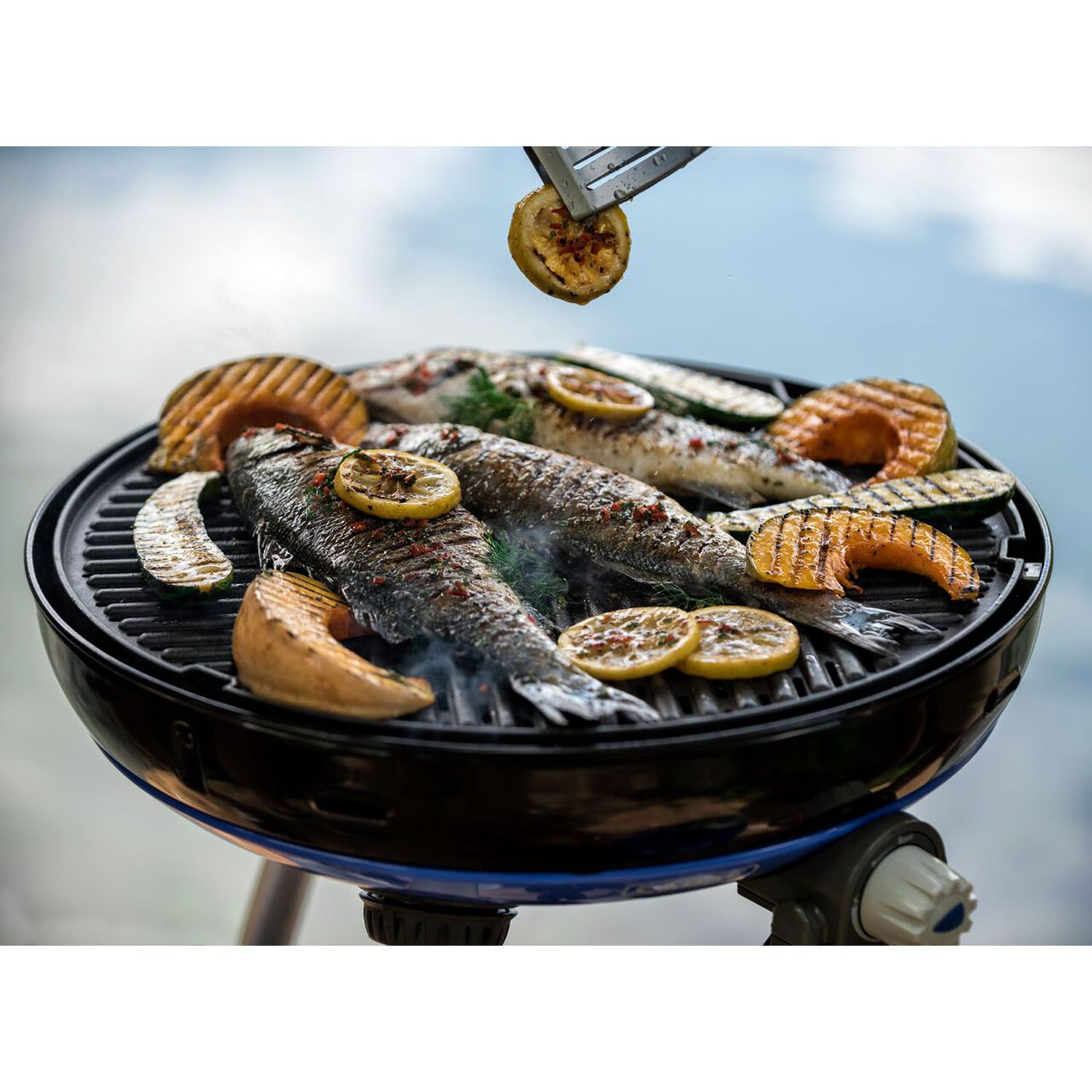 Cadac Carri Chef 2 Portable Grill With Pot Ring Grill Plate And Chef Pan Grill Plate Portable Grill Chef