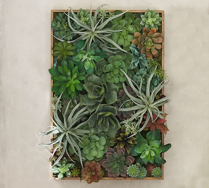 Faux Succulent Wall Art Green Large Pottery Barn In 2020 Succulent Landscape Design Succulent Wall Art Succulent Wall