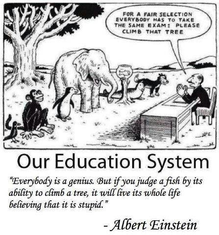 Albert Einstein The Best Education System Teacher Humor