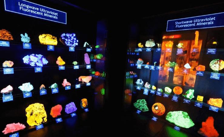 Colorado School of Mines Geology Museum The Denver Ear