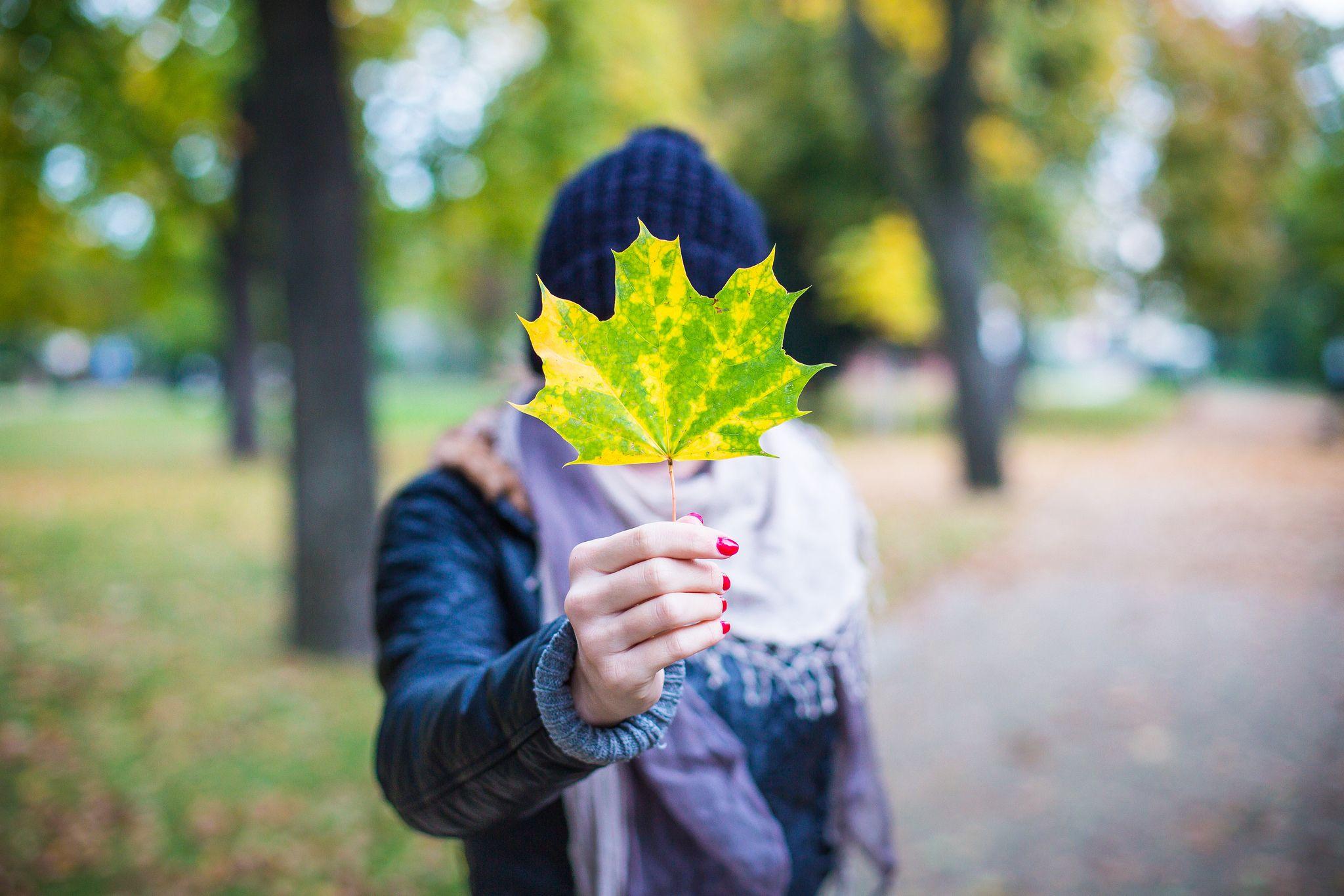 Descarga esta imagen de una chica sosteniendo una hoja totalmente gratis y libre de derechos para utilizar en tu web o blog. > http://imagenesgratis.eu/imagen-gratis-de-una-chica-sosteniendo-una-hoja/