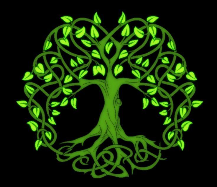 Crann Bethadh árbol De La Vida árbol De La Vida Céltico Tatuaje árbol De La Vida Símbolos Celtas