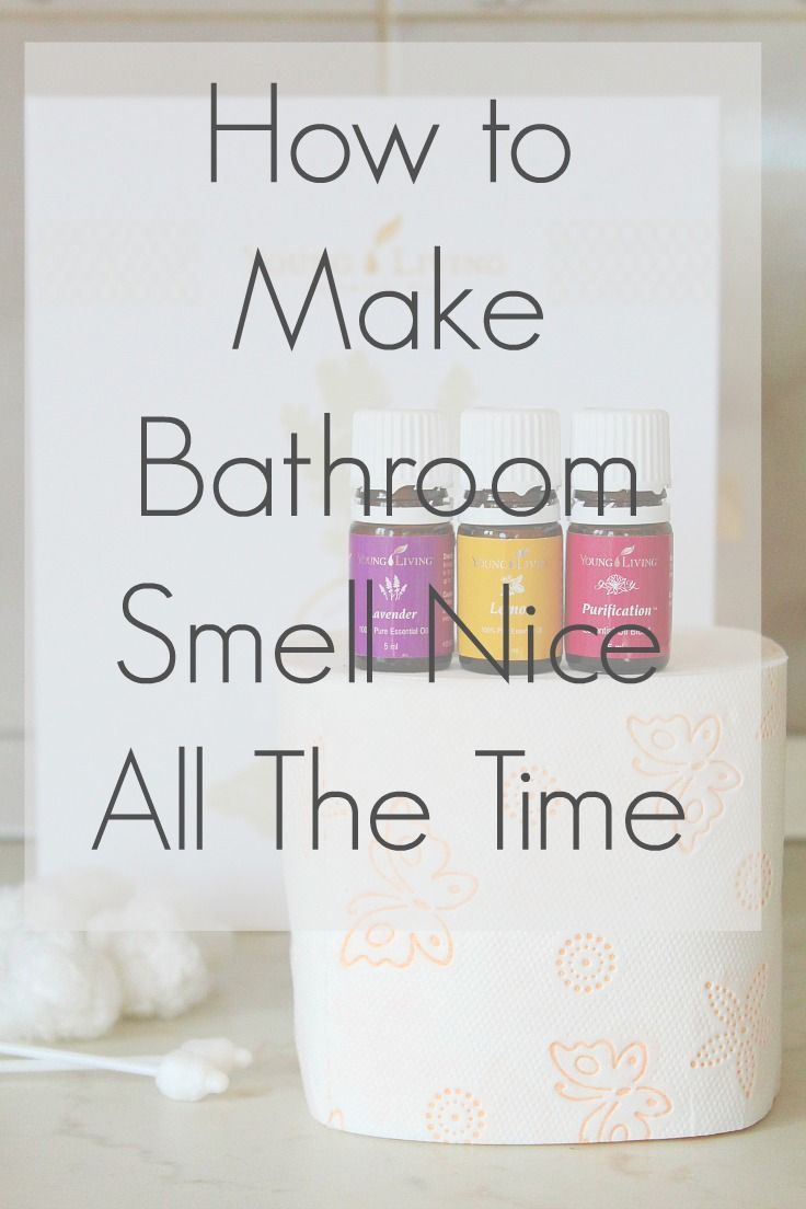 The Best Air Freshener For Bathroom House Smell Good Cleaning