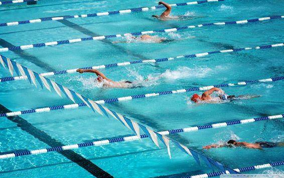 Natation Crawl Natation Crawl Nage Libre Jeux Olympiques