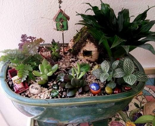 Linda Roberts uses many varied and tiny plants in her dish garden