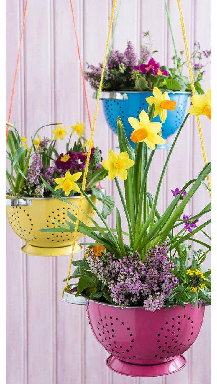 Ideas para decorar jard n con art culos de cocina hogar for Jardineria exterior con guijarros