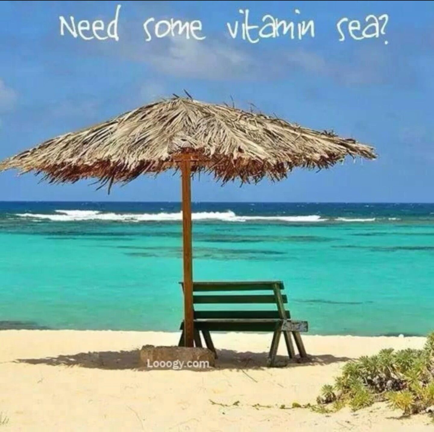 Need some vitamin  also quotes pinterest vitamins rh