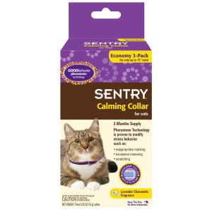 Sentry Calming Collar For Cats Health Wellness Cat Petsmart Calming Cat Cat Collars Cats