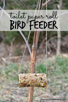 Toilet Paper Roll Bird Feeder Craft | Homemade bird feeders, Bird ...